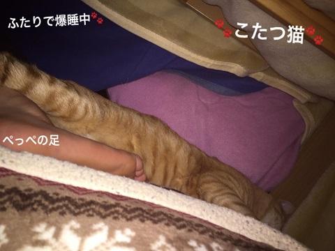 20160121_kota2-3